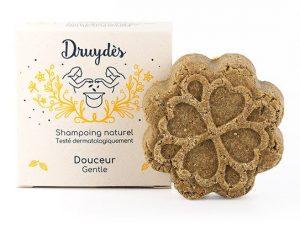 druydès